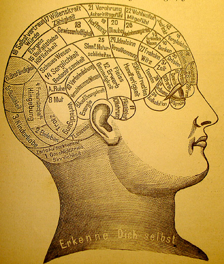 APA accredited online phd psychology programs deal with the mind