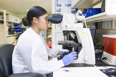A medical laboratory science program online graduate