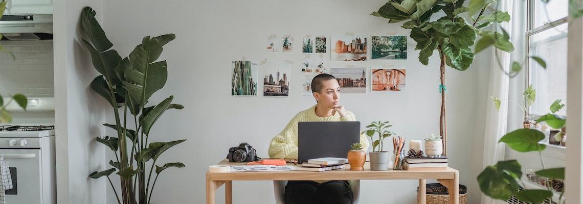 Earn an online master's entrepreneurship and start your dream business